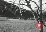 Image of annual wild horse round up Hayward California USA, 1930, second 53 stock footage video 65675032154
