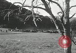 Image of annual wild horse round up Hayward California USA, 1930, second 55 stock footage video 65675032154