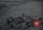 Image of American Army soldiers Korea, 1953, second 35 stock footage video 65675032201