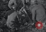 Image of U.S. Army Medical Service in Korea Korea, 1953, second 37 stock footage video 65675032202