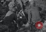 Image of U.S. Army Medical Service in Korea Korea, 1953, second 38 stock footage video 65675032202