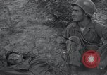 Image of U.S. Army Medical Service in Korea Korea, 1953, second 49 stock footage video 65675032202