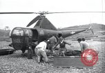 Image of U.S. Army Medical Service in korea Korea, 1953, second 3 stock footage video 65675032204