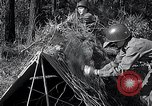 Image of female soldiers United States USA, 1951, second 34 stock footage video 65675032212