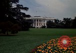 Image of Marigolds in bloom Washington DC USA, 1974, second 16 stock footage video 65675032288