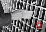 Image of hands performing various jobs late 1930s United States USA, 1937, second 29 stock footage video 65675032298