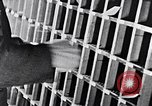 Image of hands performing various jobs late 1930s United States USA, 1937, second 30 stock footage video 65675032298