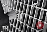Image of hands performing various jobs late 1930s United States USA, 1937, second 31 stock footage video 65675032298