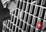 Image of hands performing various jobs late 1930s United States USA, 1937, second 38 stock footage video 65675032298