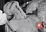 Image of Richmond Barthe designing sculpture New York City USA, 1937, second 15 stock footage video 65675032304