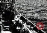 Image of Students studying specimens Sea of Okhotsk, 1947, second 23 stock footage video 65675032348