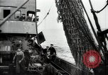 Image of Students studying specimens Sea of Okhotsk, 1947, second 32 stock footage video 65675032348