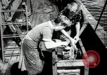 Image of Students studying specimens Sea of Okhotsk, 1947, second 55 stock footage video 65675032348