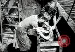 Image of Students studying specimens Sea of Okhotsk, 1947, second 56 stock footage video 65675032348