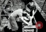 Image of Students studying specimens Sea of Okhotsk, 1947, second 57 stock footage video 65675032348
