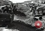 Image of Beet Kolkhoz Commune of Paris cotton Kolkhoz North Star Kolkhoz Kiev Ukraine, 1947, second 15 stock footage video 65675032359
