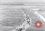Image of Tushino air show Tushino Russia, 1956, second 7 stock footage video 65675032567