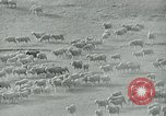 Image of drought United States USA, 1936, second 6 stock footage video 65675032594