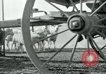 Image of drought United States USA, 1936, second 52 stock footage video 65675032594