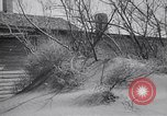 Image of Dust Bowl Dalhart Texas USA, 1960, second 49 stock footage video 65675032606