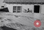 Image of Dust Bowl Texas USA, 1936, second 60 stock footage video 65675032608