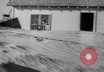 Image of Dust Bowl Texas USA, 1936, second 62 stock footage video 65675032608