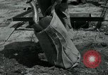 Image of 155 mm Howitzer Seoul Korea, 1951, second 6 stock footage video 65675032645