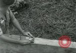Image of scope instrument Vietnam, 1962, second 16 stock footage video 65675032663