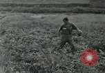 Image of scope instrument Vietnam, 1962, second 28 stock footage video 65675032663