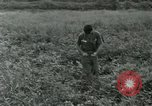 Image of scope instrument Vietnam, 1962, second 31 stock footage video 65675032663