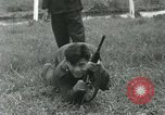 Image of troops Vietnam, 1962, second 16 stock footage video 65675032666