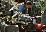 Image of villagers Vietnam, 1970, second 35 stock footage video 65675032671