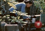 Image of villagers Vietnam, 1970, second 42 stock footage video 65675032671