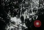 Image of Viet Cong digging trenches Vietnam, 1965, second 15 stock footage video 65675032687