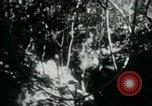 Image of Viet Cong digging trenches Vietnam, 1965, second 16 stock footage video 65675032687