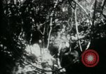 Image of Viet Cong digging trenches Vietnam, 1965, second 19 stock footage video 65675032687