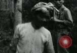 Image of Rural Vietnamese tapping rubber trees Vietnam, 1965, second 36 stock footage video 65675032688