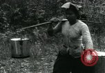 Image of Rural Vietnamese tapping rubber trees Vietnam, 1965, second 42 stock footage video 65675032688