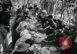 Image of Vietnamese families carrying food and supplies into Viet Cong camp in  Vietnam, 1965, second 30 stock footage video 65675032697