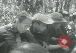 Image of Vietnamese families carrying food and supplies into Viet Cong camp in  Vietnam, 1965, second 43 stock footage video 65675032697