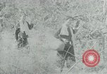 Image of Vietnamese families carrying food and supplies into Viet Cong camp in  Vietnam, 1965, second 47 stock footage video 65675032697