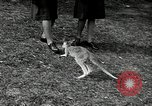 Image of Women Army Corps Australia, 1944, second 53 stock footage video 65675032708