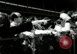 Image of Wood Memorial horse race Queens New York City USA, 1962, second 26 stock footage video 65675032768