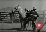 Image of Roundup of wild horses United States USA, 1943, second 38 stock footage video 65675032777