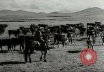 Image of Roundup of wild horses United States USA, 1943, second 46 stock footage video 65675032777