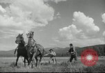 Image of American colonial militia United States USA, 1954, second 9 stock footage video 65675032786