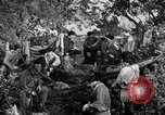 Image of American colonial militia United States USA, 1954, second 12 stock footage video 65675032786