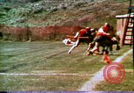 Image of Lacrosse games and lacrosse players United States USA, 1972, second 21 stock footage video 65675032798