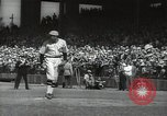 Image of Robert Taylor in St Louis Cardinals baseball uniform California United States USA, 1932, second 40 stock footage video 65675032822