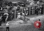 Image of rodeo Houston Texas USA, 1966, second 20 stock footage video 65675032846
